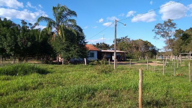 Sítio 14,6 ha e água nascente - Terenos, MS, Brasil - Foto 7