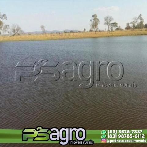 Fazenda à venda, 7000 hectares por R$ 105.000.000 - Centro - Porto Murtinho/MS - Foto 2