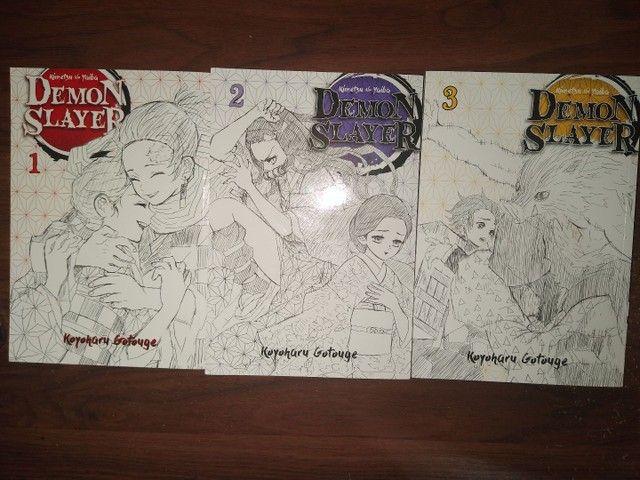 Vendo os 3 primeiros Volumes do Mangá Demon Slayer - Foto 2