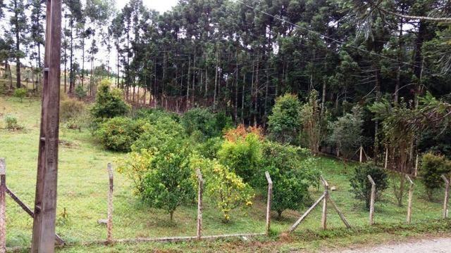 Chacara a 4 km do centro de Araucara 3.734,18 pronto para construir - Foto 6