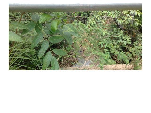 9.0 Hectares, Chapada dos Guimarães, 01 riacho e um rio, um paraíso, aceito troca - Foto 7