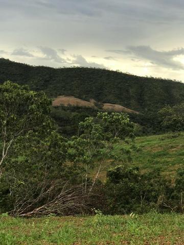 135 Alq. Pronta + Beira Rio! 40 km Pires do Rio. - Foto 4