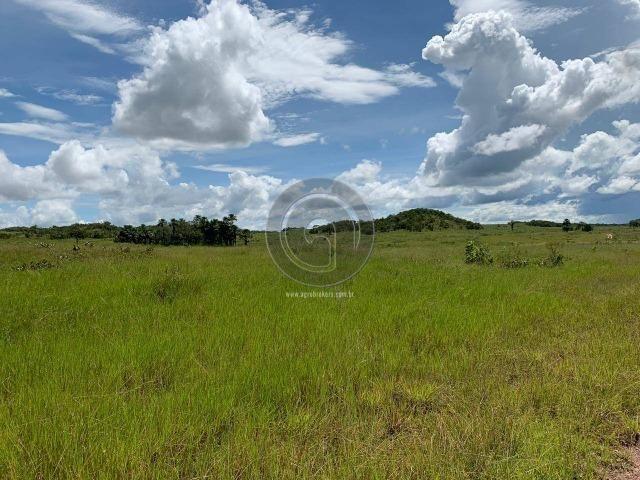 Fazenda 1300 ha para Arrendamento barra do bugres - Foto 5
