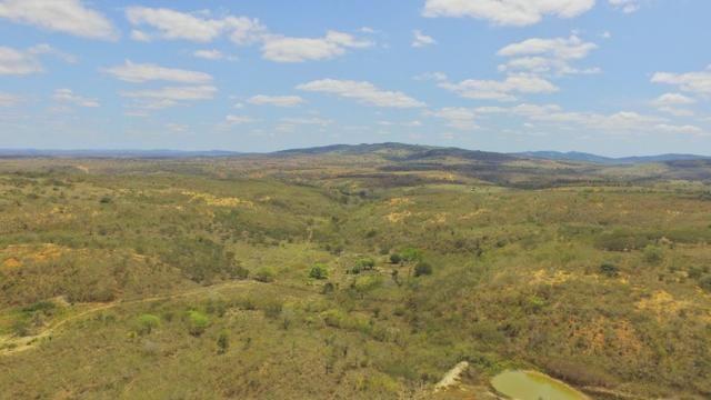 Fazenda à Venda na Bahia - Fazenda de Pecuária c/ 326 Hectares em Várzea do Poço - Bahia - Foto 10