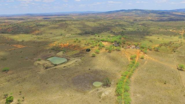 Fazenda à Venda na Bahia - Fazenda de Pecuária c/ 326 Hectares em Várzea do Poço - Bahia - Foto 3