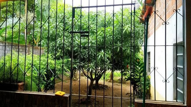 Vendo uma casa em Bragança-PA - Foto 19