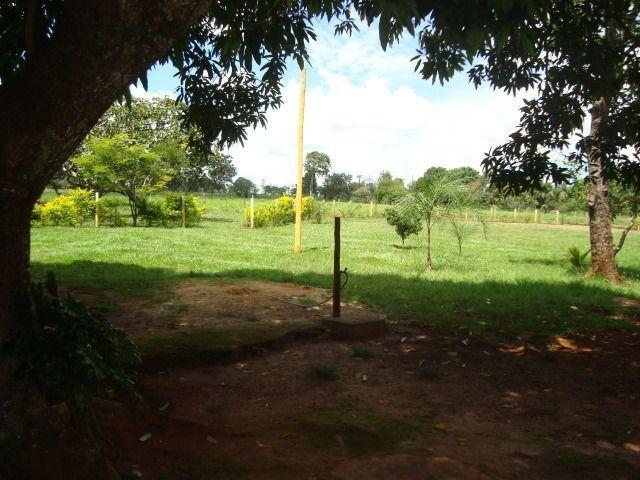 Chácara Excelente 2,5 Alqueires, Próximo à Rozelandia-Bela Vista de Goiás - Foto 9