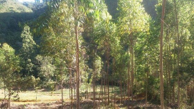 DM- Sítio/Terreno Grande em Santa Teresa 13 hectares