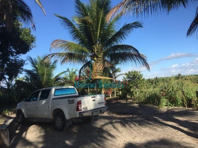 Fazenda em Belmonte-BA - Foto 5