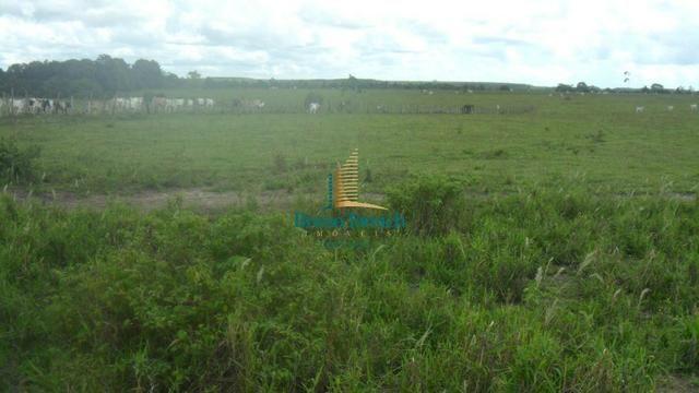Fazenda em Eunápolis - Foto 5