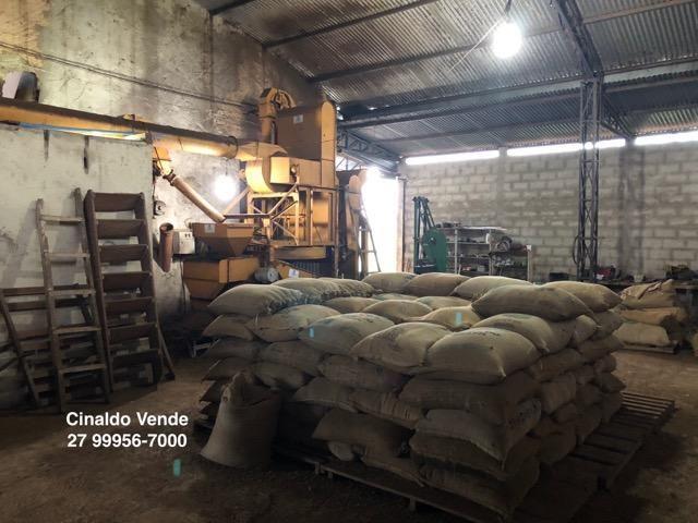 Fazenda com 35 alqueires (169,40 hectares) em São Mateus ES - Foto 13