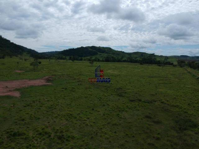 Fazenda à venda, por R$ 19.950.000 - Alta Floresta D'Oeste/RO - Foto 4
