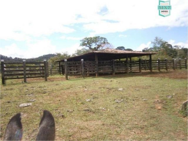 Fazenda na cidade de Ibirataia a 340 Km de Salvador e 320 Km de Camaçari - Foto 9