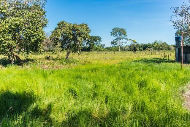 Chácara 8,32 hectares - Foto 2