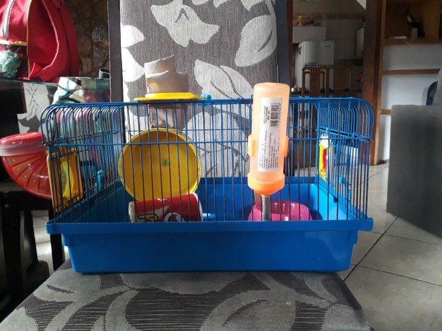 Vendo kit para hamster