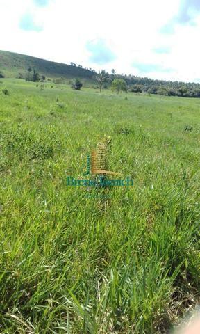 Fazenda á 90 Km de Eunápolis - Foto 13