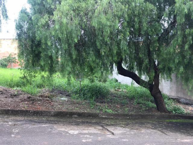 Terreno residencial para Venda Residencial Novo Horizonte, Alfenas MG - Foto 3