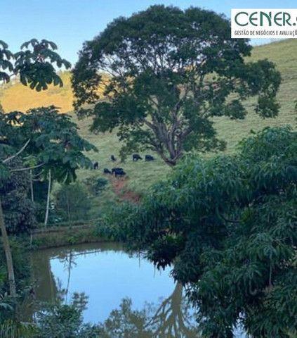 1878/Fazenda de alta qualidade com 66 ha em ótima localização - Foto 8