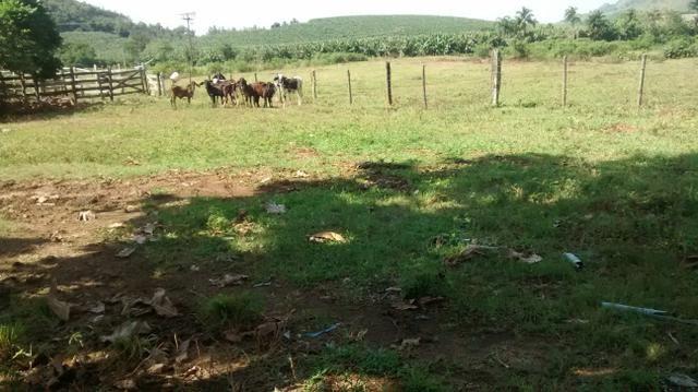 Fazenda 26 alqueires cariacica - Foto 5