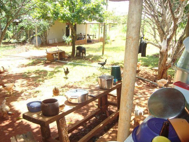 Chácara Excelente 2,5 Alqueires, Próximo à Rozelandia-Bela Vista de Goiás - Foto 4