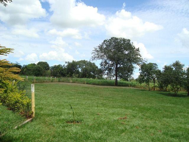 Chácara Excelente 2,5 Alqueires, Próximo à Rozelandia-Bela Vista de Goiás - Foto 10