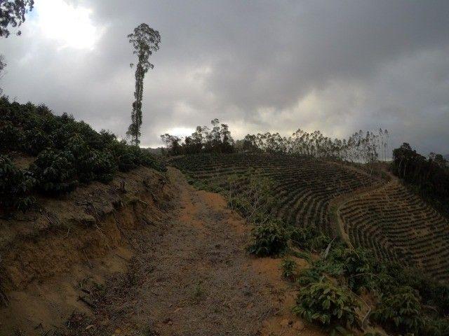 DM- Sítio grande e produtivo em Santa Teresa 25 Hectares - Foto 7