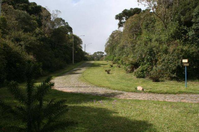 Terreno na Serra Gaucha - São Francisco de Paula/RS Aceita Propostas