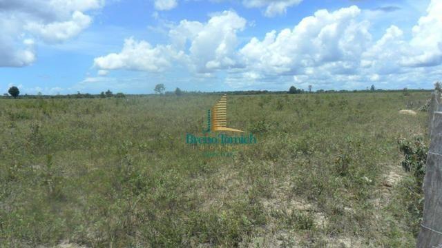 Fazenda em Eunápolis - Foto 15