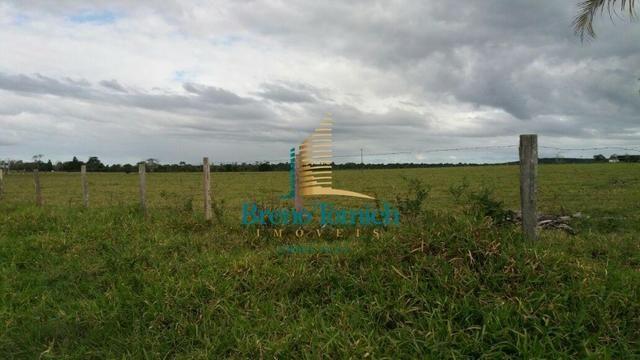 Fazenda Itamaraju - Foto 6