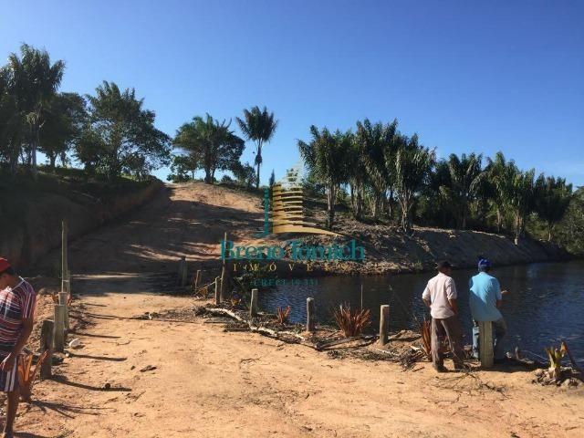 Fazenda em Belmonte-BA - Foto 6
