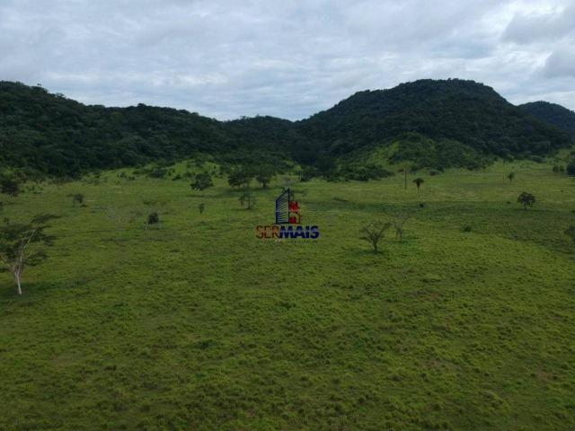 Fazenda à venda, por R$ 19.950.000 - Alta Floresta D'Oeste/RO - Foto 2