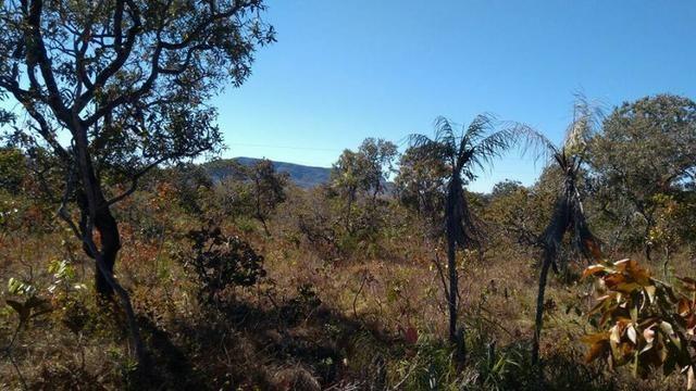 Chácara ha 14 Km de Alto Paraíso de Goiás - Chapada dos Veadeiros - Foto 9