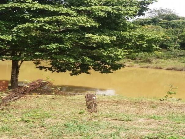 Chácara à venda com 3 dormitórios em Zona rural, Cezarina cod:em527 - Foto 5