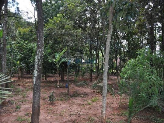 Chácara à venda com 5 dormitórios em Vila pinhal broa, Itirapina cod:4319 - Foto 15