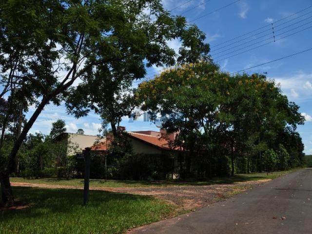 Chácara à venda com 5 dormitórios em Vila pinhal broa, Itirapina cod:4319 - Foto 13