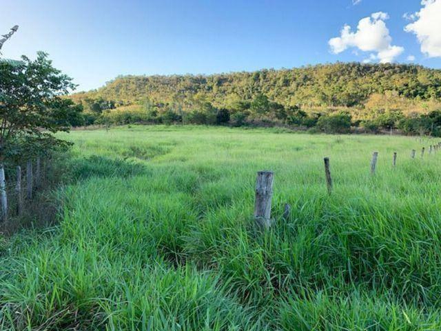 Vendo Fazenda 12 Alqueires, 55 Km de Palmas