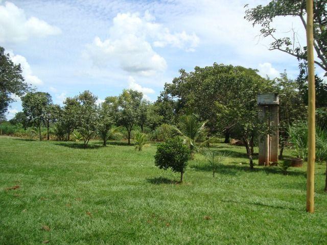 Chácara Excelente 2,5 Alqueires, Próximo à Rozelandia-Bela Vista de Goiás - Foto 5