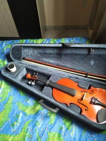Violino vivace