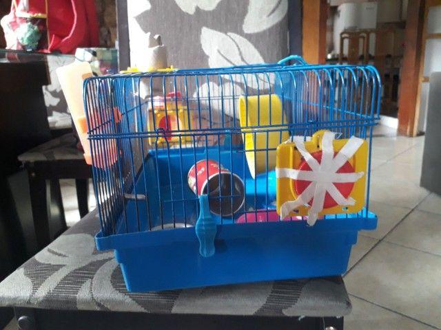 Vendo kit para hamster - Foto 2