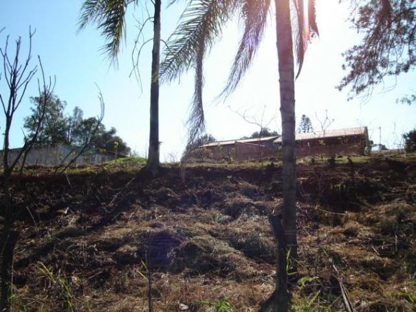Terreno para alugar em Fazenda gleba palhano, Distrito espirito santo cod:00611.008