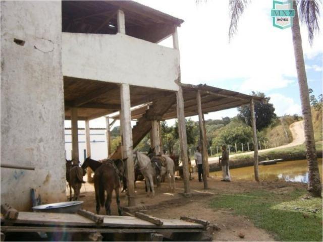 Fazenda na cidade de Ibirataia a 340 Km de Salvador e 320 Km de Camaçari - Foto 6