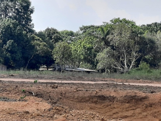 Chácaras Vista Bela Km-13 //15 Minutos Depois da Ponte do Rio Negro - Foto 2
