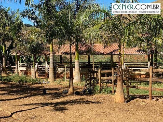 1878/Fazenda de alta qualidade com 66 ha em ótima localização - Foto 12