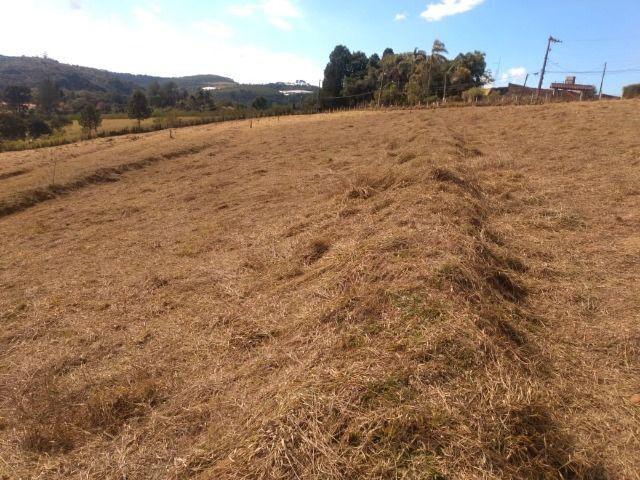 85- Compre seu terreno agora, sem complicações - Foto 5