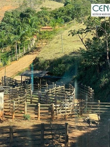 1878/Fazenda de alta qualidade com 66 ha em ótima localização - Foto 17