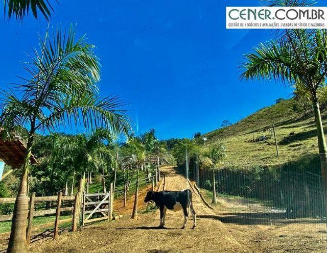 1878/Fazenda de alta qualidade com 66 ha em ótima localização - Foto 16