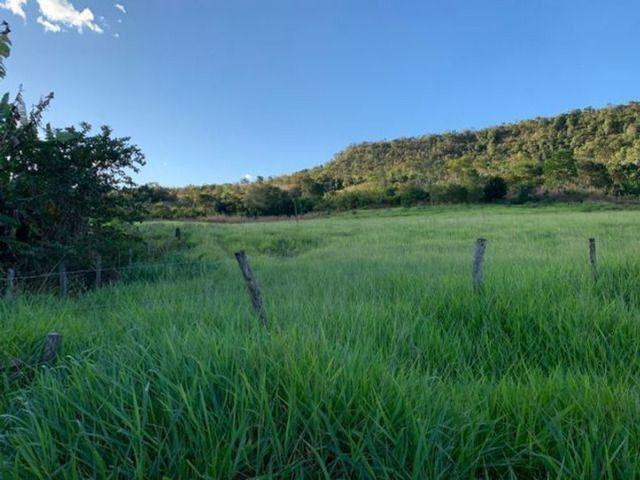 Vendo Fazenda 12 Alqueires, 55 Km de Palmas - Foto 2