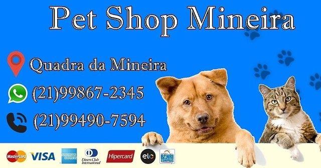 Pet shop mineira