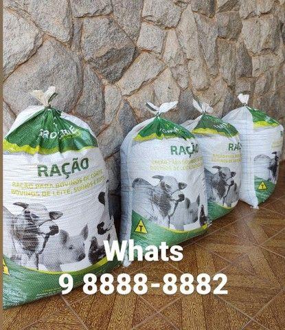 Esterco (embalado em sacos de 40kg) *Entrego - Foto 3