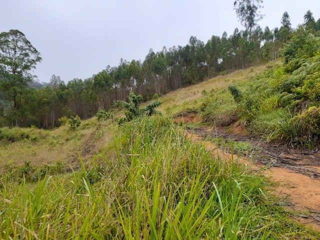 DM- Sítio/Terreno Grande em Santa Teresa 13 hectares - Foto 11